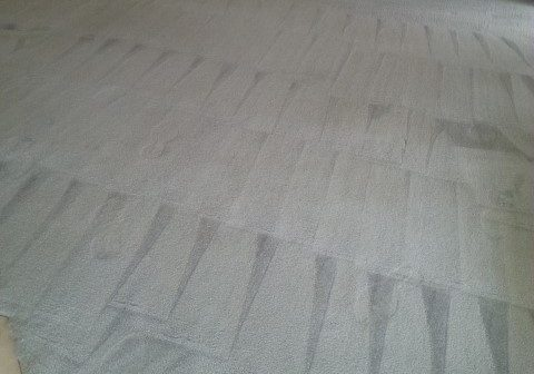 Carpet Cleaning Results - Alpine Carpet & Tile Cleaning
