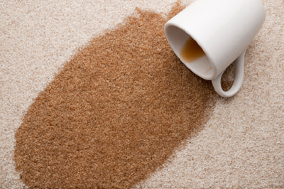 How to remove a coffee stain on carpet - Alpine Carpet & Tile Cleaning